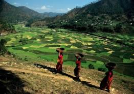 Hills of Uttrakhand